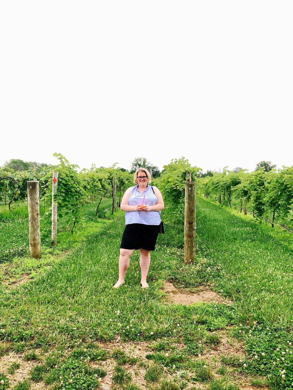Daniel's Vineyard Winery Indianapolis
